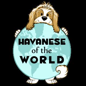 HavaneseOfTheWorld.com